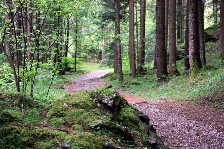 Wunderschöne Trails am Lago di Ledro