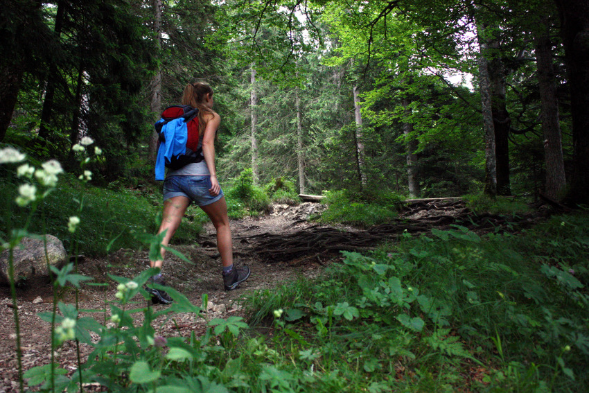 Wandern auf den Jochberg.