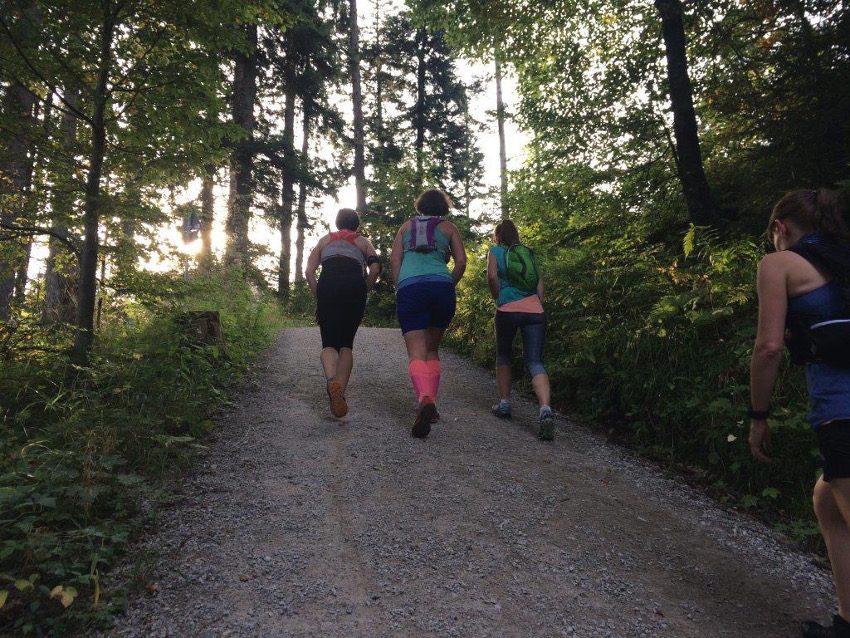 Steile Forstwege ging es auf dem Weg zum Riederstein hinauf.